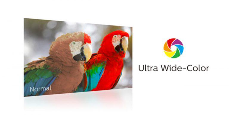 Why Ultra Wide-Color is Essential for Accurate Color Reproduction