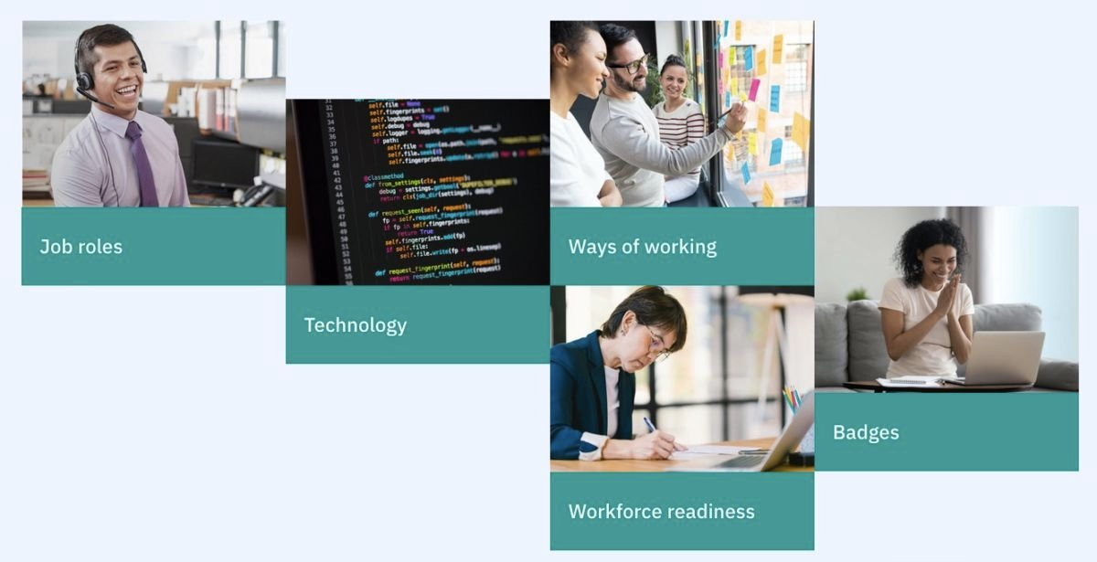 IBM SkillsBuild